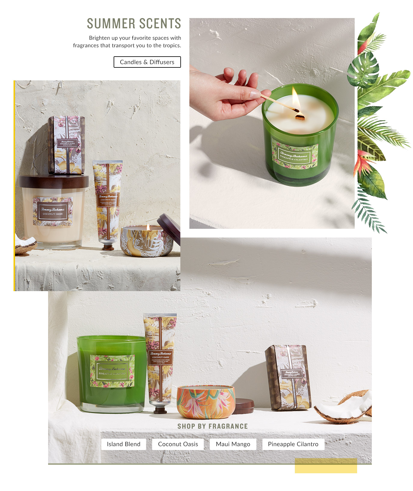 Shop By Scent